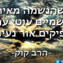 9 ציטוטים יפים של הרב קוק