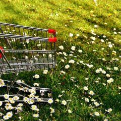 11 דרכים שאולי לא חשבת עליהן לחסוך בהוצאות