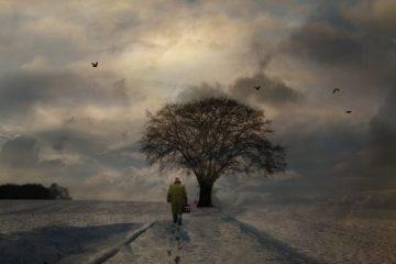 האדם נושע על-ידי האהבה ובאהבה: ציטוטים יפים של ויקטור פראנקל