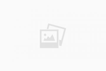 סטיב קאטס – סרטי אנימציה