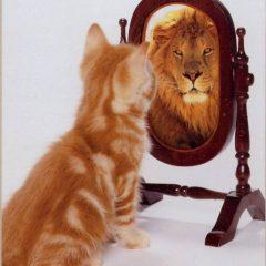 זה רק אני וסכמת העצמי שלי: על הדרך בה אנו יוצרים את עצמנו